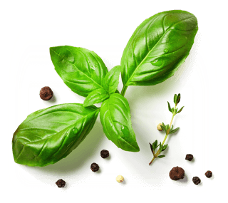 A photo of a fresh basil leaf, a small sprig of thyme and a few red and black peppercorns.